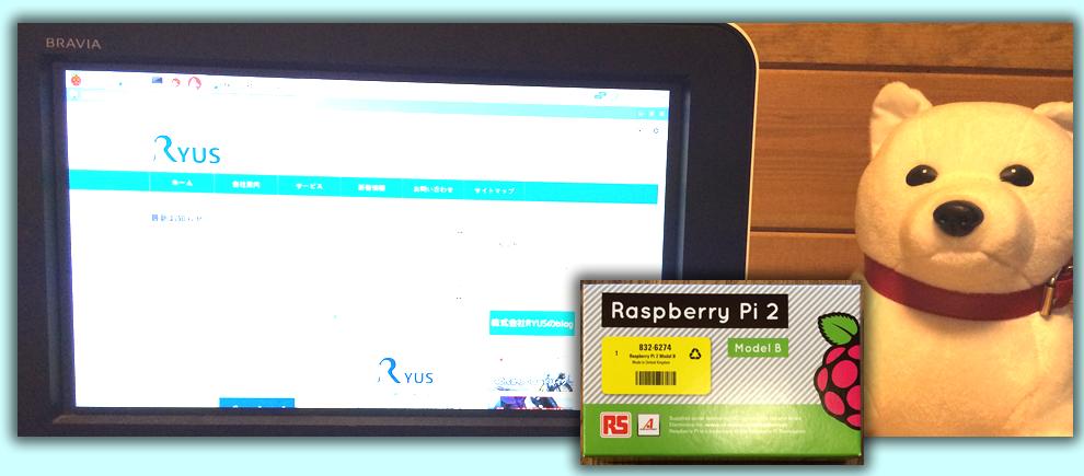 Raspberry Pi 2 Model B の設定。OSを入れてインターネット接続ができるまで